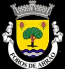 FOROS DE ARRAO